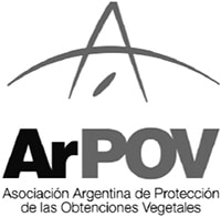 arpov_bw-min